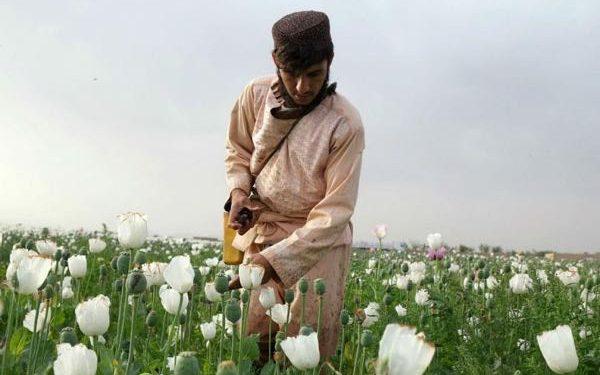 اعتیاد در افغانستان