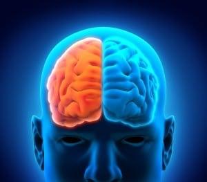 کوکائین و مغز