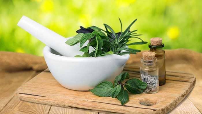داروی گیاهی مناسب اعتیاد چند نوع دارد